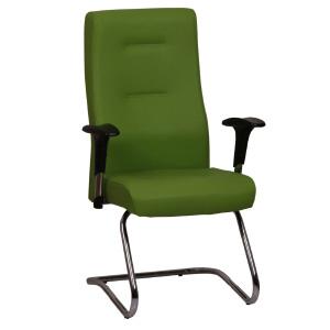 صندلی گلدسیت خانواده کاپا